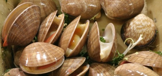How_to_eat_clams