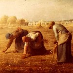 The Gleaners, doing work