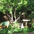 Meditation Area, 2011