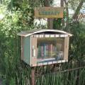 Vista Street Library, 2012