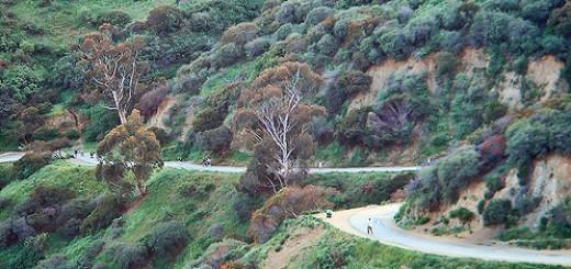 Runyon Canyon Trail
