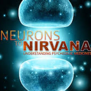 neurons nirvana