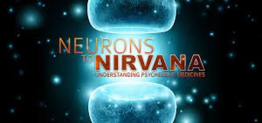 neurons nirvana
